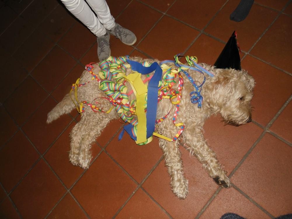 schlafender Oskar wird geschmückt